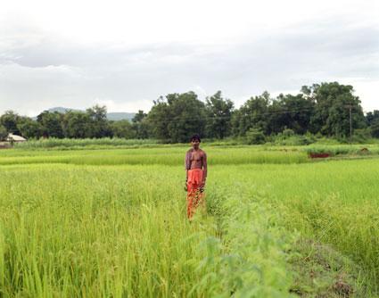 odisha_panel-001.jpg